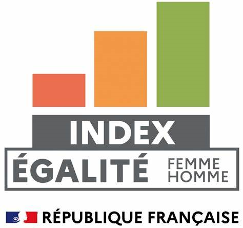 logo index egalite FH
